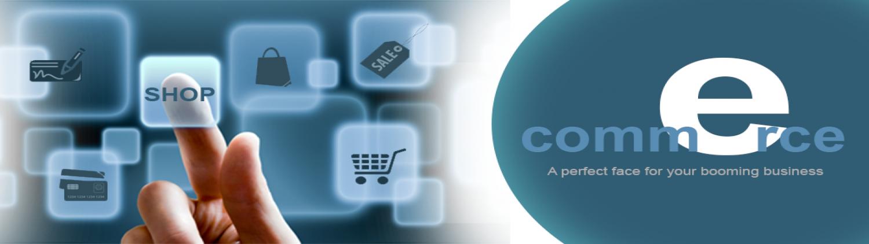 DreamWorth is best e-commerce website development company.